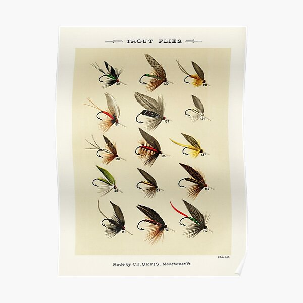 Vintage Fly Fishing Print - Trout Flies Poster