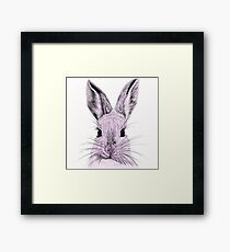 What's Funny Bunny? Framed Print
