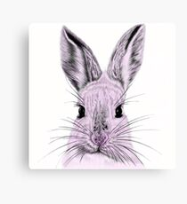 What's Funny Bunny? Canvas Print