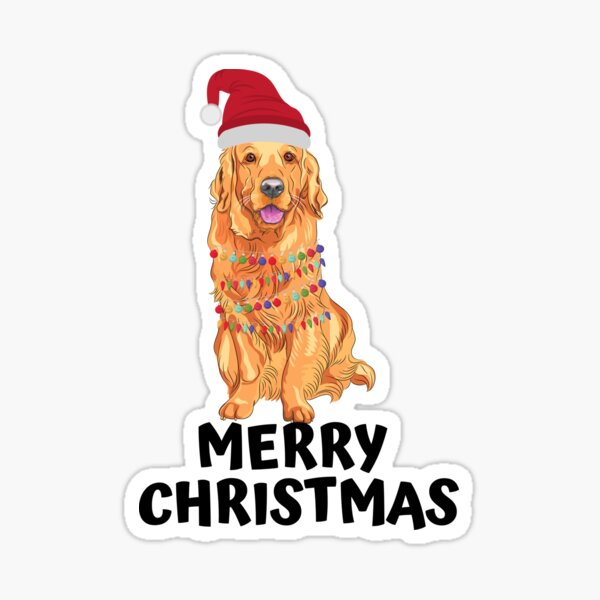 Golden retriever with Christmas lights and hat wishes you a merry Christmas Sticker