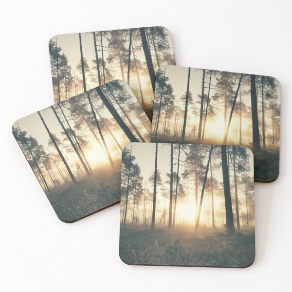 The Secret Forest  Coasters (Set of 4)