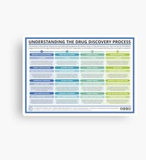 The Drug Discovery Process Canvas Print