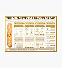 The Chemistry of Bread-Making Photographic Print