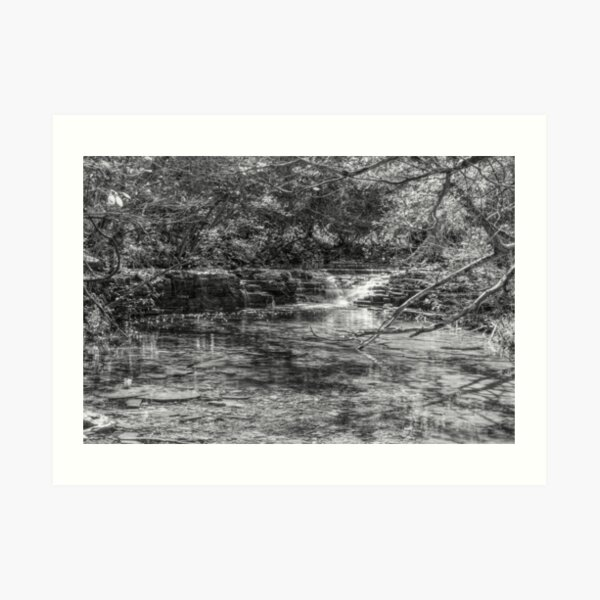 Waterfall Creek At Henning Conservation Grayscale Art Print