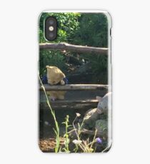 Winnie the Pooh Photograph iPhone Case