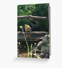 Winnie the Pooh Photograph Greeting Card