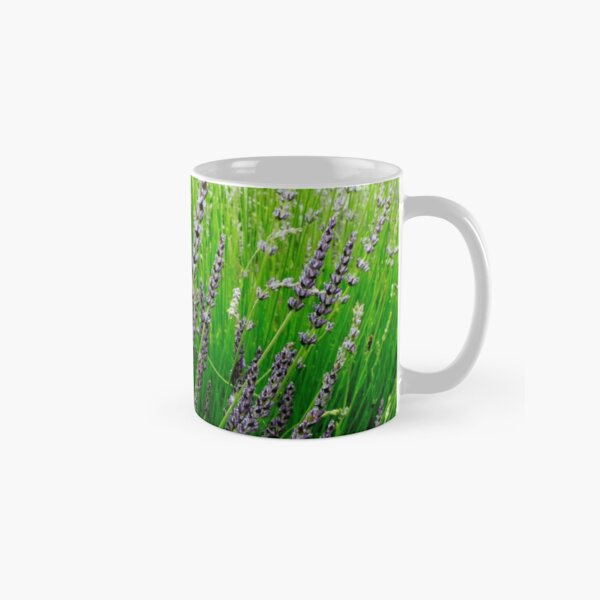 Misty Morning in Tiger Alley Classic Mug