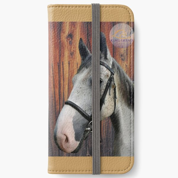 Barney Collection iPhone Wallet