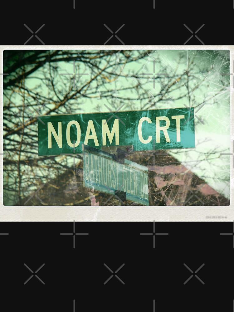 Noam mask, Noam, Noam socks, Noam sticker, Noam magnet by PicsByMi