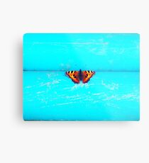 Butterfly - Unique Photography Metal Print