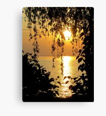 Lace Against the Sunset Canvas Print