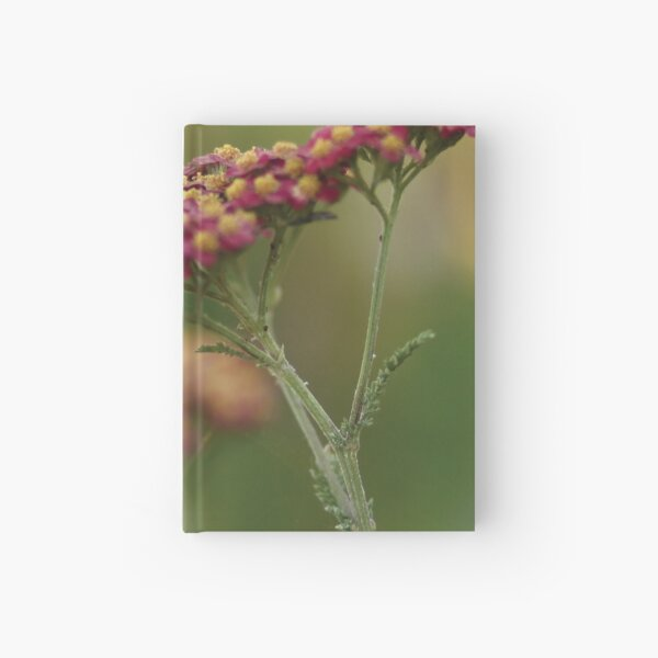 Red Yarrow Hardcover Journal