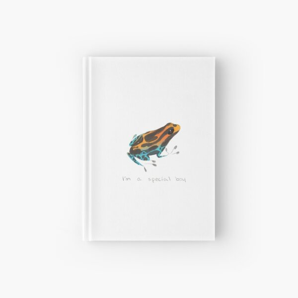 Special Boy Hardcover Journal