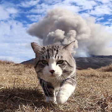 Volcano cat by NYANKICHILABO