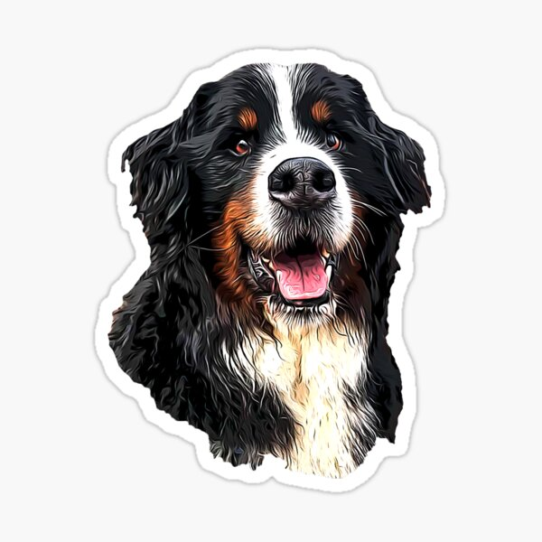 Bernese Mountain Dog Cuteness! Sticker