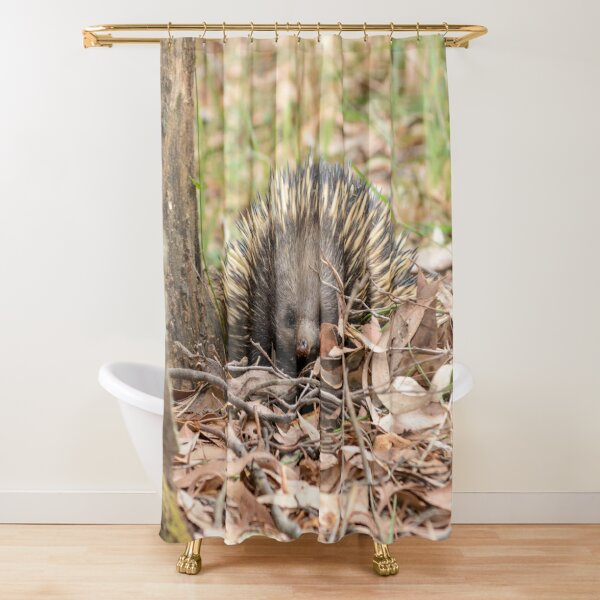 """Echidna Face"" - Australian Animals Australian Wildlife Shower Curtain"