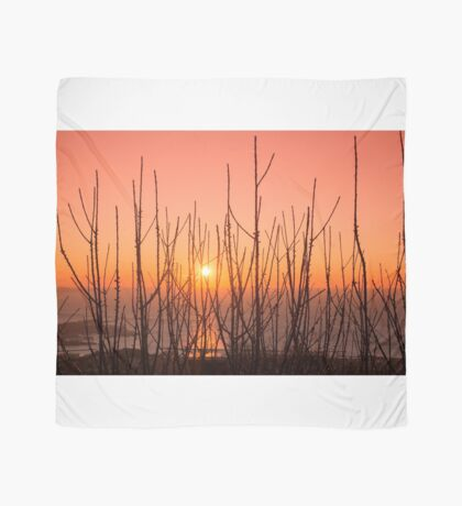 Sunset at Trieste Scarf