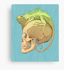 colorful illustration with iguana and skull Canvas Print