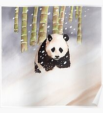 Panda In The Snow Poster