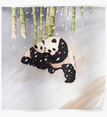 Pandas In The Snow Too Poster