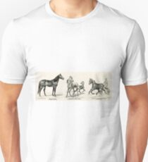 Aristotle, by Aristos - as a producer and stock horse Marie Frank - 1893 - Currier & Ives T-Shirt