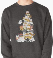 cat pile Pullover