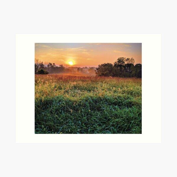 Sunset Pasture Art Print