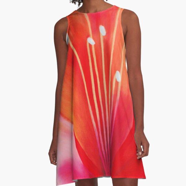 Spring Explosion A-Line Dress