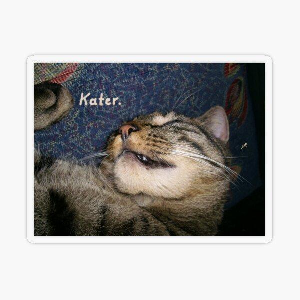 Cat hangover, sleeping like a hangover Transparent Sticker
