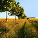 Longbridge Deverill  by Victoria Ashman