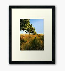 Longbridge Deverill  Framed Print