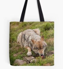 Wolf drinking Tote Bag