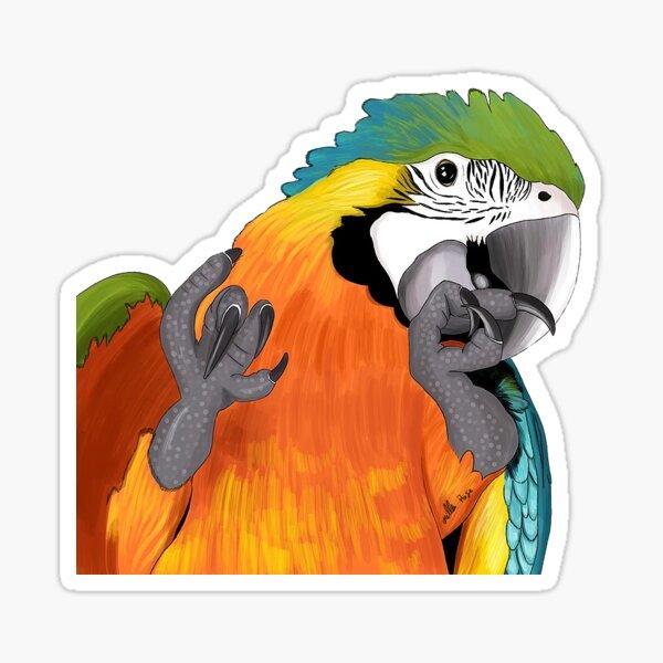 Blue & Yellow Macaw Sticker