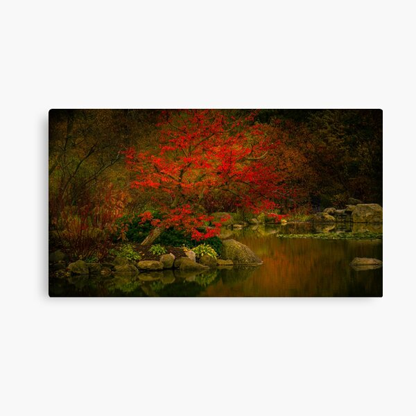 meditation on red Canvas Print