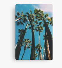 Palm Trees LA Canvas Print