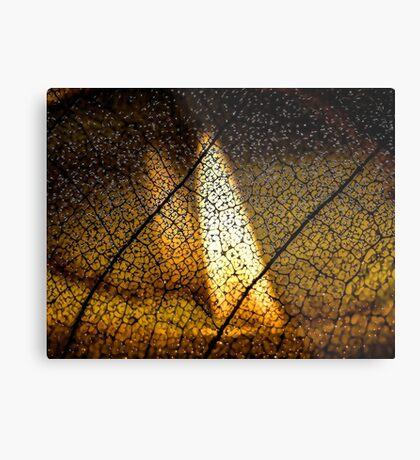 Flame's Reflection Metal Print