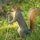 I Love My Flower! by Kenneth Haley
