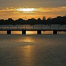 Poole Park Lake by RedHillDigital