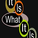 It is what it is! ... by Wightstitches