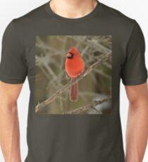 Northern Cardinal - Cardinalis cardinalis  Unisex T-Shirt