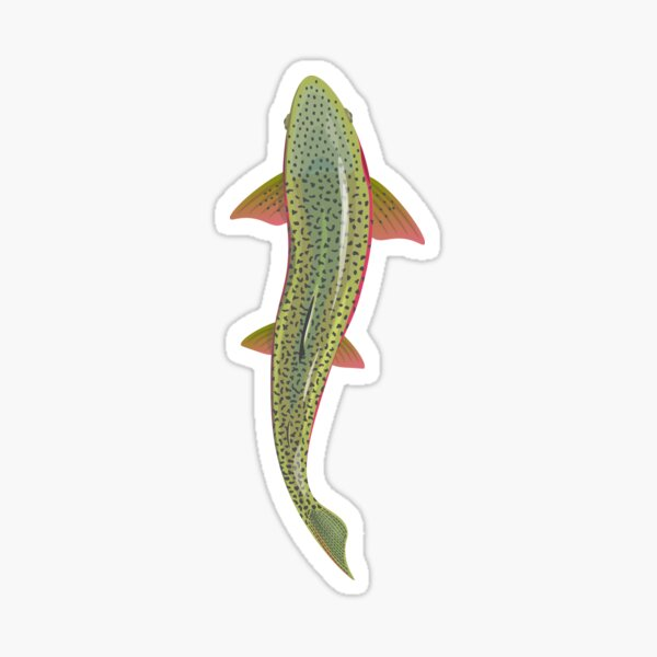 Trout From Above Sticker