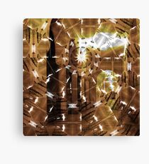 Fractured History Canvas Print