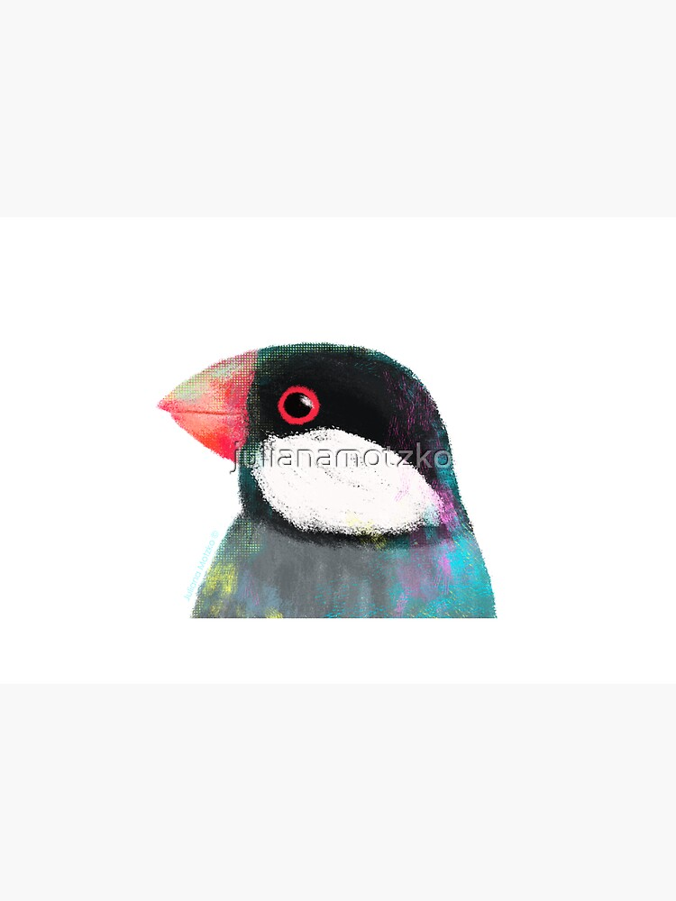 Java Sparrow Bird by julianamotzko