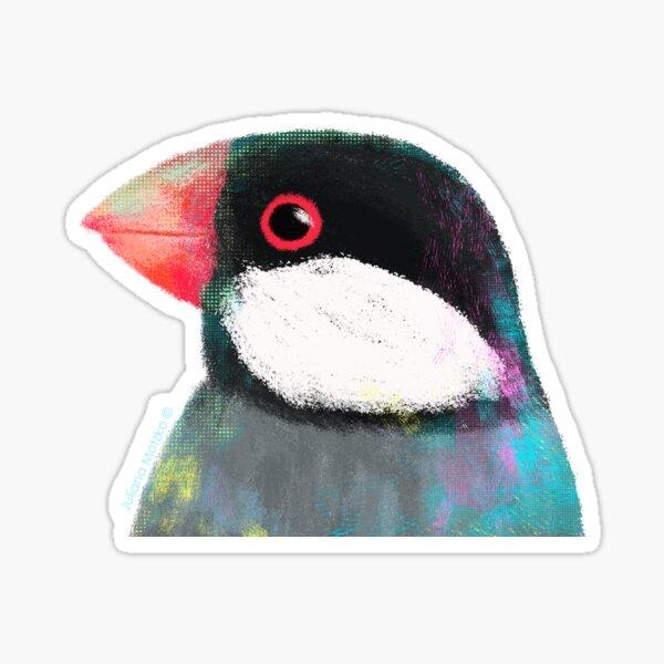 Java Sparrow Bird Sticker