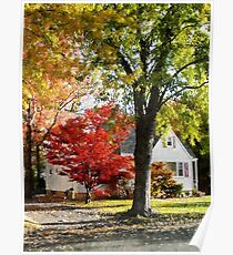 Autumn Street With Red Tree Poster