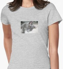 Close Up Of A Grey Kitten Womens Fitted T-Shirt