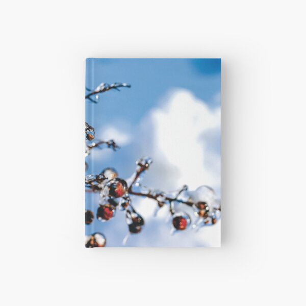 Ice Storm Hardcover Journal