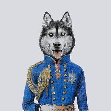 royal siberian husky portrait by windzao
