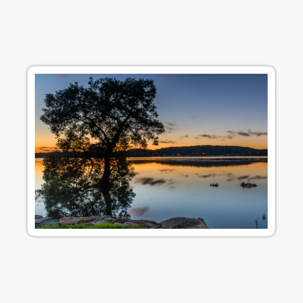 Smooth Dawn with Light Cloud and Tree Sticker