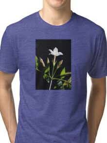 Close Up Of Jasminum Officinale Isolated On Black Tri-blend T-Shirt